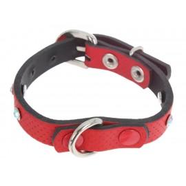 Collar Decorativo para Perro Chico - Envío Gratuito