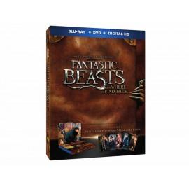 Animales Fantásticos y Dónde Encontrarlos Packaging Pop Up + Blu-Ray + DVD - Envío Gratuito